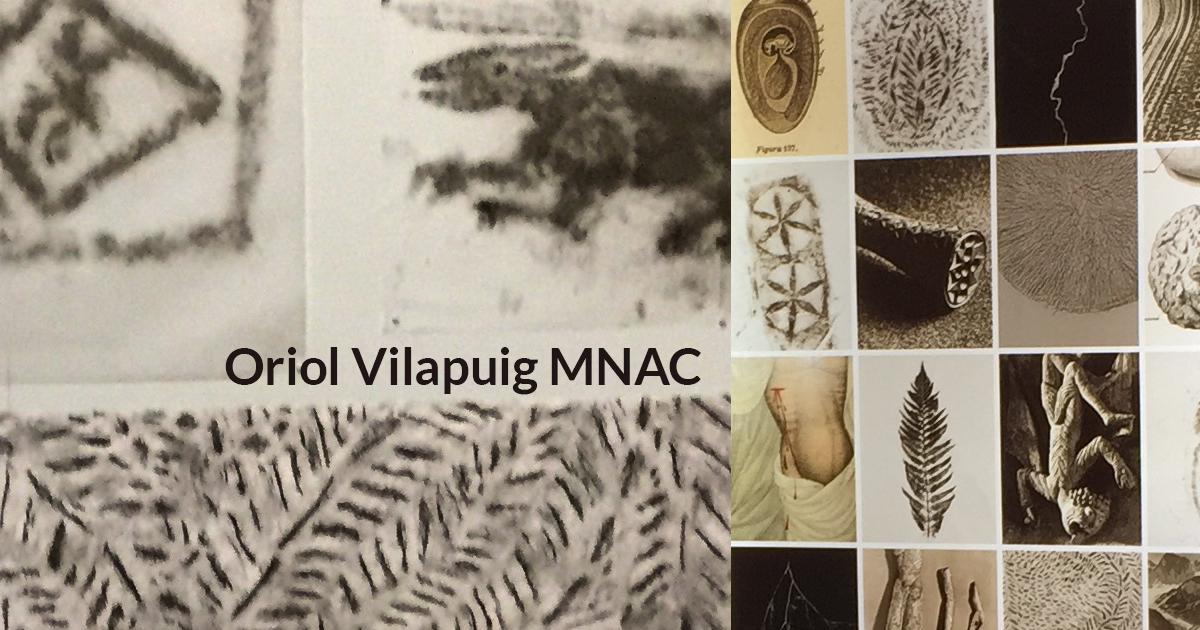Oriol Vilapuig MNAC1