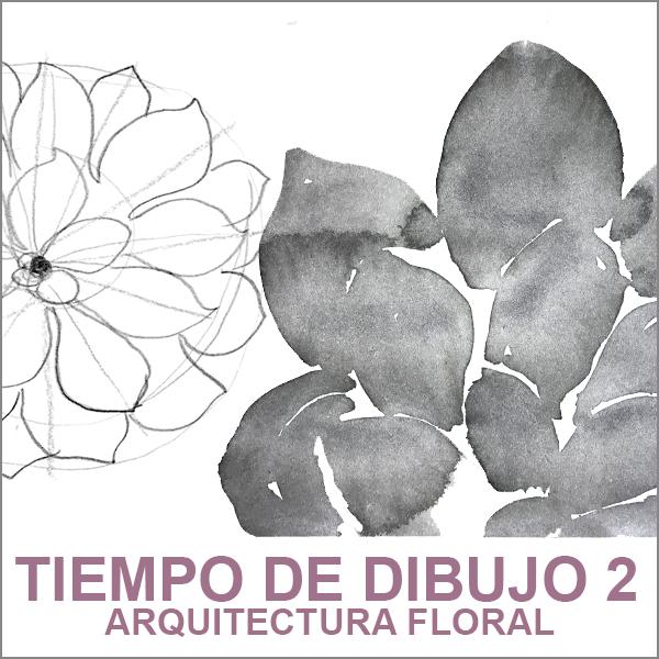 TIEMPO DE DIBUJO 2
